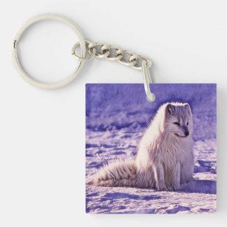 Arktischer Fox Schlüsselanhänger