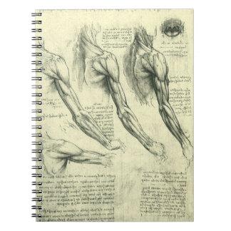 Arm-und Schulter-Anatomie durch Leonardo da Vinci Spiral Notizblock