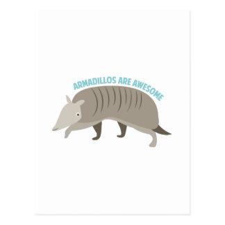Armadillo_Armadillos_Are_Awe Postkarte