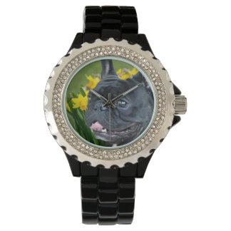 Armbanduhr der Frühlings-französischen Bulldogge