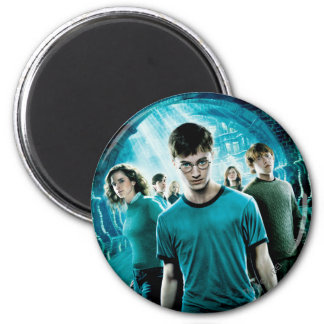 Harry Potter Magnete