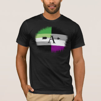 Aromantic asexuales Aro As-Shirt T-Shirt