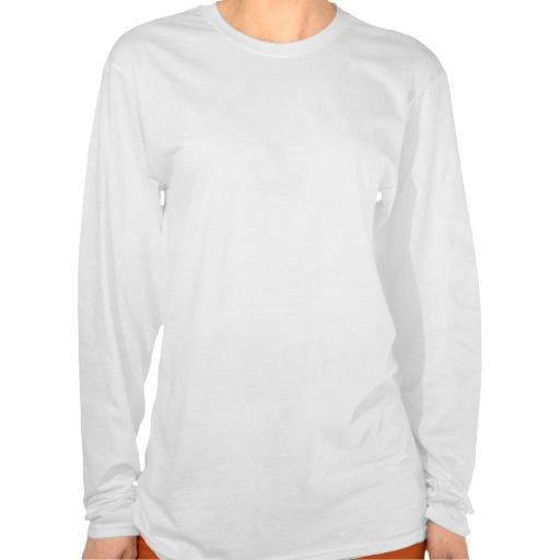 Art: Der Hanes der Frauen langer Hülsen-Nano-T - S Shirt
