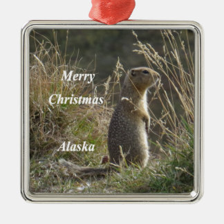 Artic Eichhörnchen Silbernes Ornament