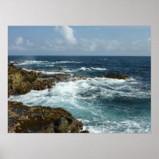 Arubas felsige Küste und blauer Ozean Poster