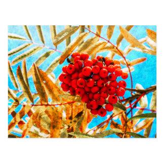 Ashberry künstlerisch postkarte