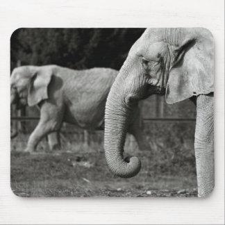 Asiatische Elefant-Mausunterlage Mousepad