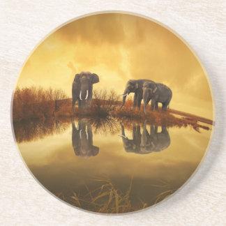 Asiatische Elefanten in Thailand unter einem Getränkeuntersetzer