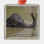 Asiatischer badender Elefant, thailändischer Elefa Ornamente