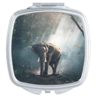 Asiatischer Elefant in einer Sunlit Waldreinigung Taschenspiegel