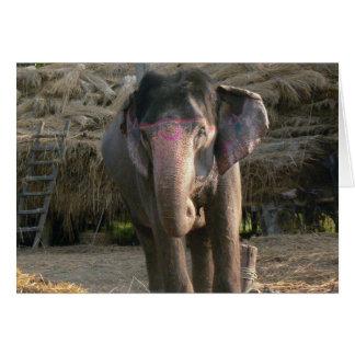 Asiatischer Elefant mit einer rosa Tiara Karte