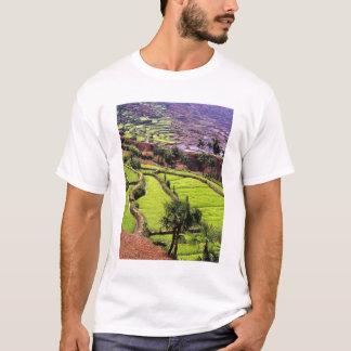 Asien, China, Yunnan, Honghe.  Reisterrassen T-Shirt