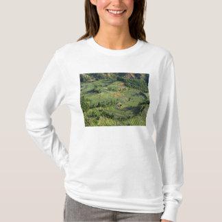 Asien, China, Yunnan, Yuanyang. Muster von Grün 2 T-Shirt