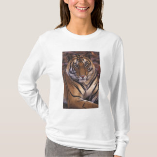 Asien, Indien, Bandhavgarth Nationalpark, T-Shirt