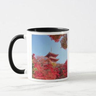 Asien, Japan, Kyoto. Herbst-Farbe Tasse