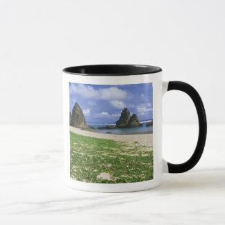Asien, Japan, Okinawa, Yambaru Küstenlinie, Meer Tasse