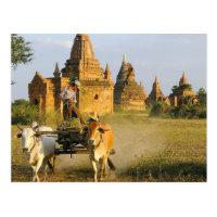 Asien, Myanmar (Birma), Bagan (Heide). Ein Wagen