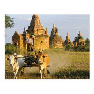 Asien, Myanmar (Birma), Bagan (Heide). Ein Wagen Postkarte