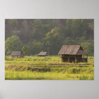 Asien, Thailand, Mae Hong Son, Reishütten in Poster