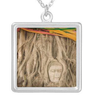 Asien, Thailand, Siam, Buddha in den Baumfurchen Versilberte Kette