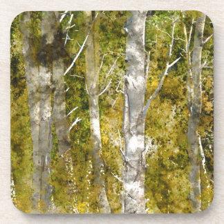 Aspen-Bäume im Fall Getränkeuntersetzer