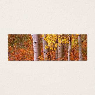 Aspen-Bäume im Herbst Mini Visitenkarte