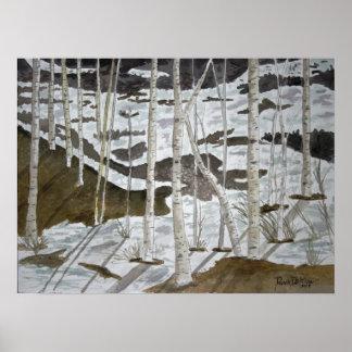 Aspen-Baumlandschaftskunstdruck Poster