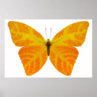 Aspen-Blatt-Schmetterling 3 Poster