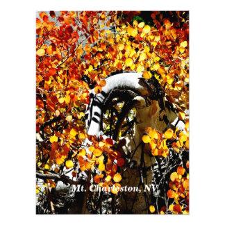 Aspen-Foto-Druck Mt. Charleston Nanovolt Herbst Fotodruck