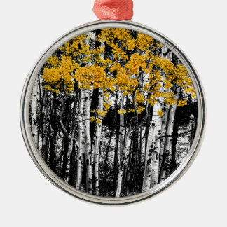 Aspen-Touch der Orange Silbernes Ornament