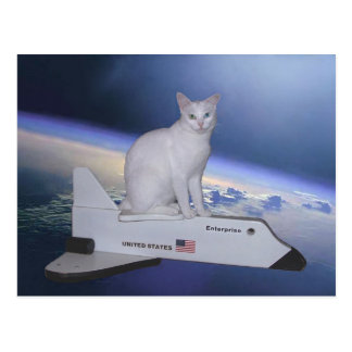 Astronauten-Katze (Geist) auf Raumfähre Postkarten