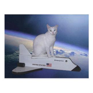 Astronauten-Katze Geist auf Raumfähre Postkarten