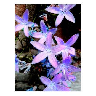 Atemberaubende empfindliche lila abstrakte wilde postkarte