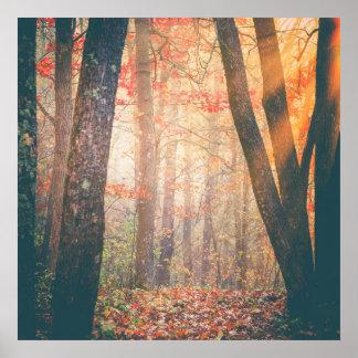 Atemberaubende Herbst-Waldlandschaftswand-Kunst Poster