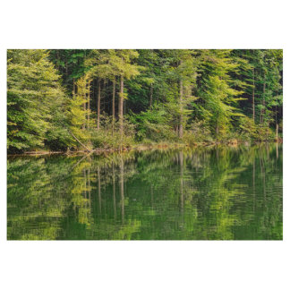 Atemberaubende Waldlandschaft Holzposter