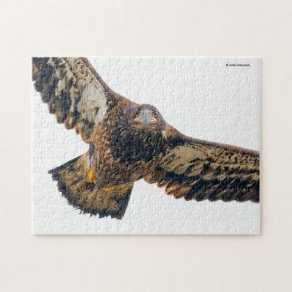 Atemberaubender kahler Adler tut eine Überführung Puzzle