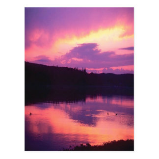 Atemberaubender, lila Sonnenaufgang reflektierte Postkarte