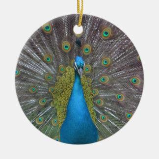 Atemberaubender Pfau Keramik Ornament