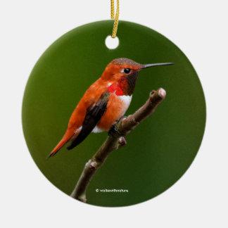 Atemberaubender Rufous Kolibri auf dem Kirschbaum Keramik Ornament