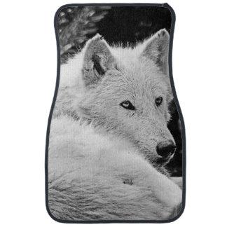Atemberaubender weißer Wolf Automatte