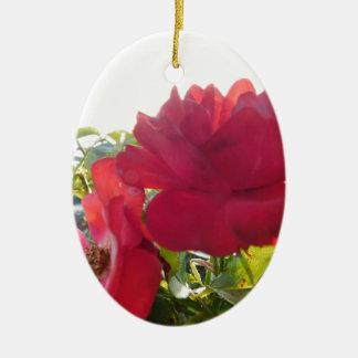 Atemberaubendes einzigartiges Augen-anziehender Keramik Ornament