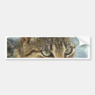 Atemberaubendes Tabby-Katzen-nahes hohes Porträt Autoaufkleber