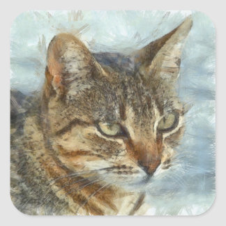 Atemberaubendes Tabby-Katzen-nahes hohes Porträt Quadratischer Aufkleber