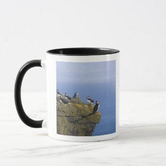Atlantische Papageientaucher (Fratercula arctica) Tasse