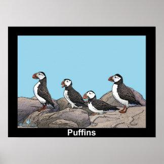 Atlantische Papageientaucher Poster