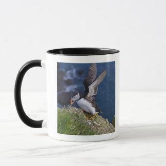 Atlantischer Papageientaucher (Fratercula arctica) Tasse