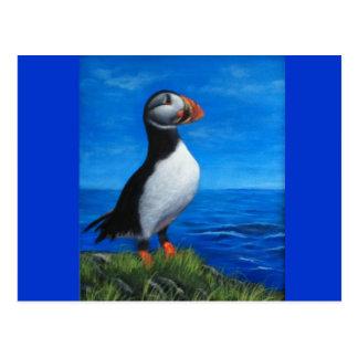 Atlantischer Papageientaucher Postkarte