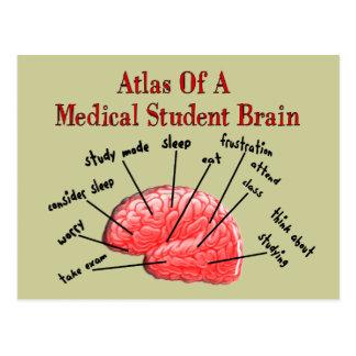 Atlas des Medizinstudent-Gehirns Postkarte