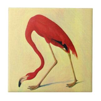 Audubon amerikanische Flamingo-Malerei Kleine Quadratische Fliese