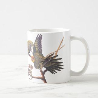 Audubon Carolina Parakeet-Tasse Tasse